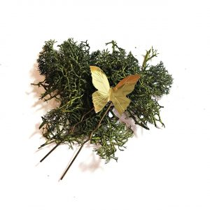 Horquilla Mariposa - Le Voilà