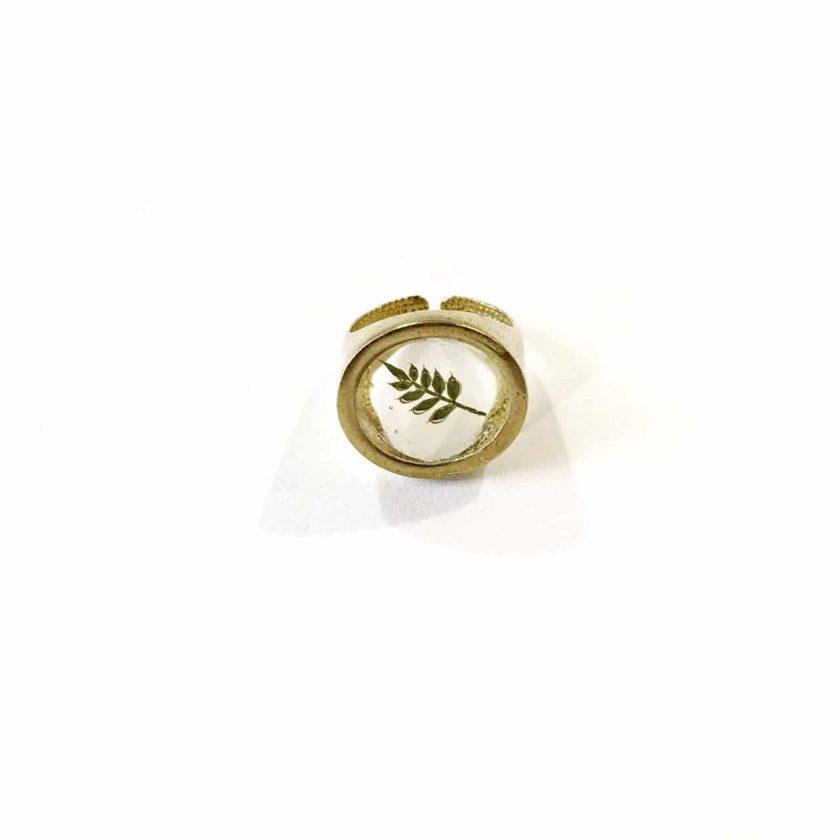 Dorian VIII Ring - Le Voila