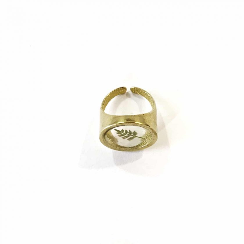 Dorian Ring VIII Detail - Le Voila